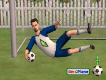 Sims2Player (S2P)
